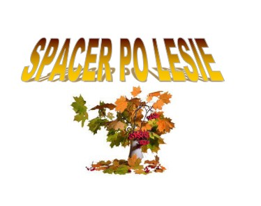 Spacer po lesie