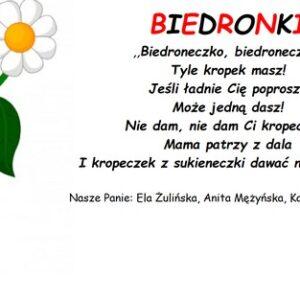 Grupa Biedronki, rok szkolny 2020/2021